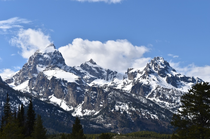 To the unearthly Grand Tetons and Yellowstone National Park
